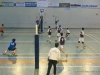 20150118-cpb-volley-rennes-coupe-de-france-040